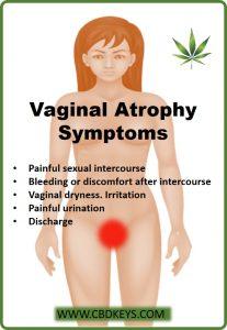 vaginal atrophy symptoms